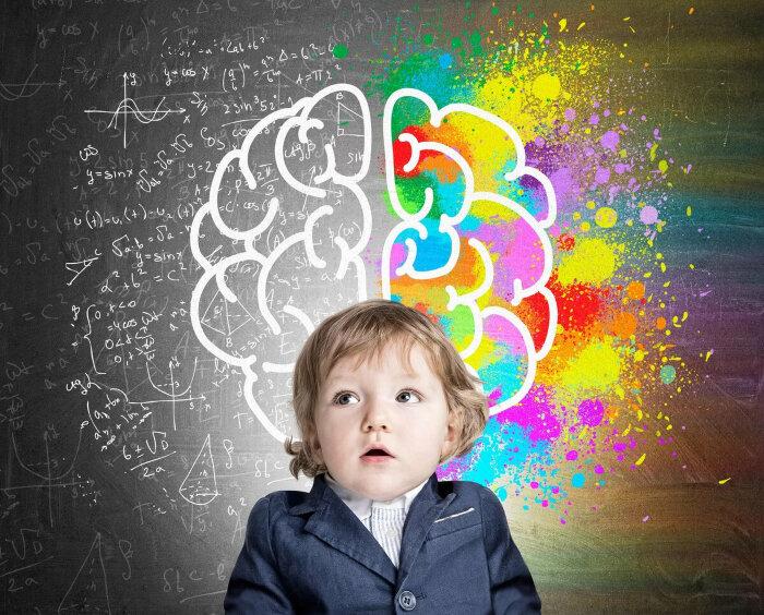 Периоды психического развития и возрастные кризисы детей (1-17 лет)