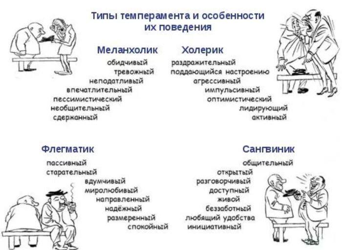 Влияние темперамента детей на воспитание
