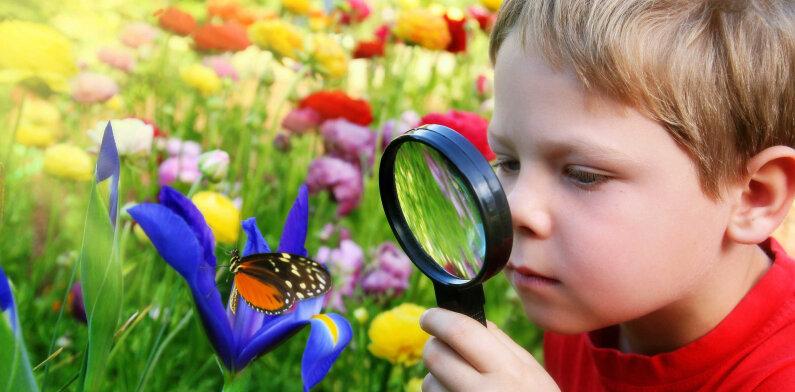Окружающий мир: развитие познавательного интереса детей